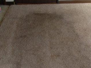 Renew your carpets!